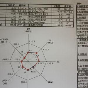 土壌成分のpH濃度分析